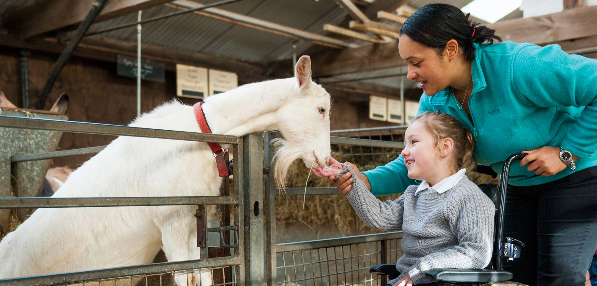 Accessibility in the farmyard & playground