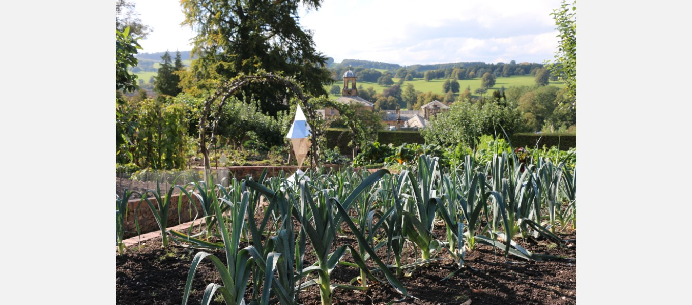 The kitchen garden is bursting with delicious produce
