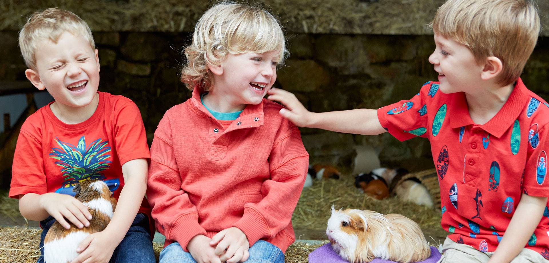 Rural skills take centre stage for half-term in the  Chatsworth Farmyard