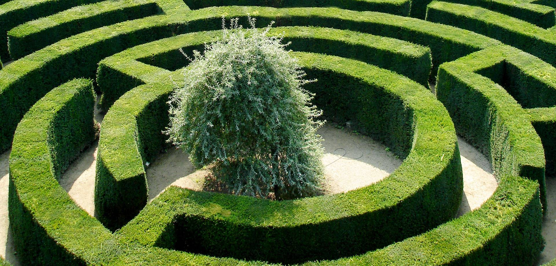 The maze for Garden maze designs