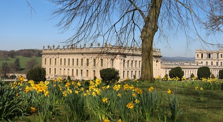 In the Chatsworth Garden: Spring is in the air
